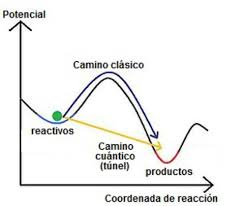 Biologia Cuántica (5/6)
