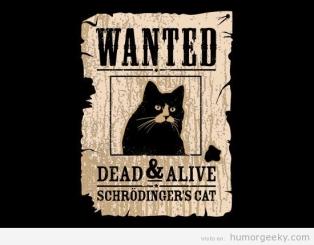 Gato de Schroedinger